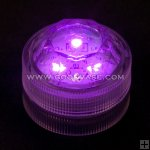 LED003-PURPLE